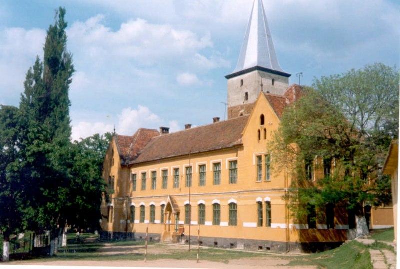 Schuleganz